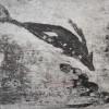 fluten, 2013 tiefdruck auf büttenpapier, 20 x 15 cm (blatt 40 x 26 cm)